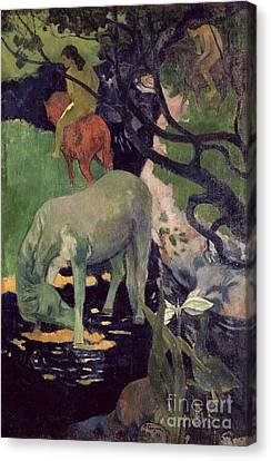 The White Horse Canvas Print by Paul Gauguin