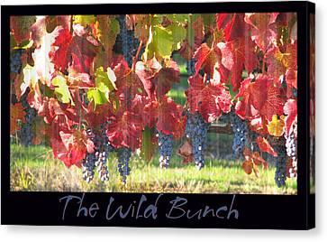 The Wild Bunch Canvas Print by Brooks Garten Hauschild