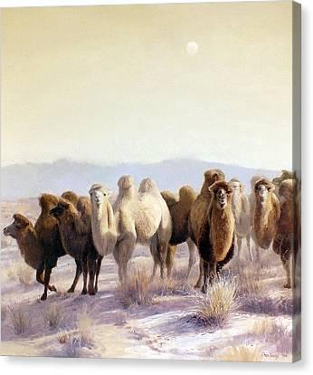 The Winter Solstice Canvas Print by Chen Baoyi