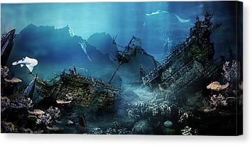 The Wreck Canvas Print by Mary Hood