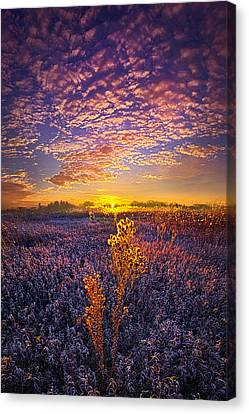 Their Voices Raised As One Canvas Print by Phil Koch