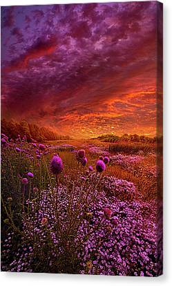 Then Ever Been Lifted Before Canvas Print by Phil Koch
