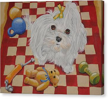 These Are My Toys Canvas Print by Laura Bolle