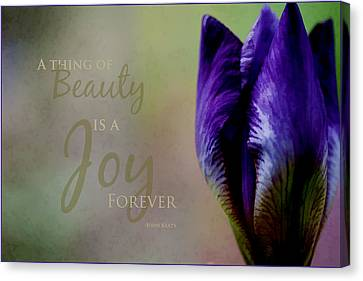 Thing Of Beauty Canvas Print by Bonnie Bruno