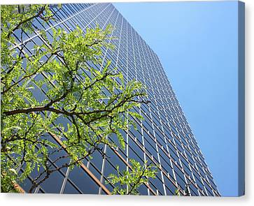 Things Are Looking Up Version 2 Southfield Michigan Town Center Building Perspective Canvas Print by Design Turnpike