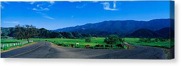 This Is A Country Intersection Canvas Print by Panoramic Images