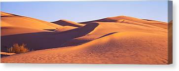 This Is Great Sand Dunes National Park Canvas Print by Panoramic Images