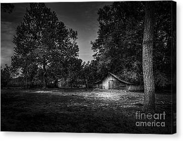 This Is Your Day Canvas Print by Marvin Spates