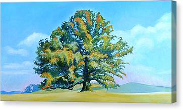 Thomas Jefferson's White Oak Tree On The Way To James Madison's For Afternoon Tea Canvas Print by Catherine Twomey
