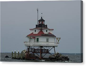 Thomas Point Shoal Lighthouse Canvas Print by Paul Sutherland