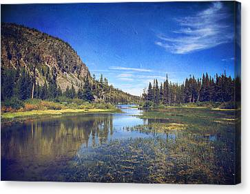 Those Summer Days Canvas Print by Laurie Search