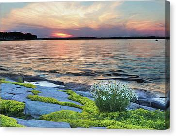 Thousand Islands Bliss Canvas Print by Lori Deiter