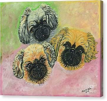 Three Amigos Canvas Print by Ania M Milo