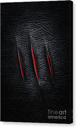 Three Cuts Canvas Print by Carlos Caetano
