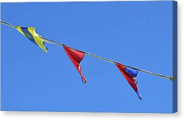Three Flags No. 1 Canvas Print by Sandy Taylor