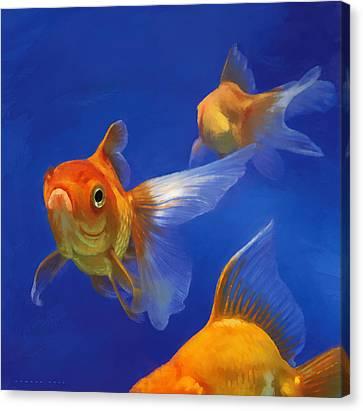 Three Goldfish Canvas Print by Simon Sturge