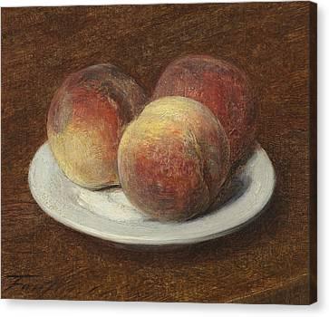 Three Peaches On A Plate Canvas Print by Ignace Henri Jean Fantin-Latour