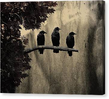 Three Ravens Canvas Print by Gothicolors Donna