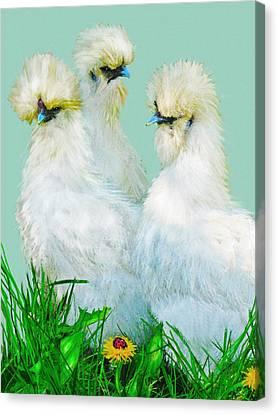Three Silky Ladies Canvas Print by Jane Schnetlage