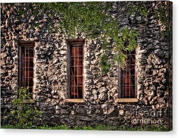 Three Windows Canvas Print by Tamyra Ayles