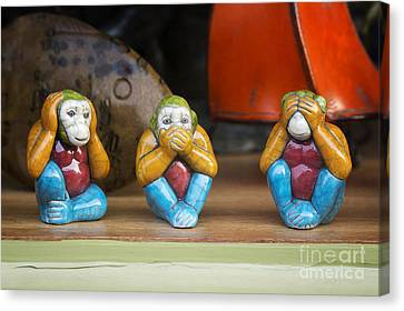 Three Wise Monkeys Canvas Print by Tim Gainey