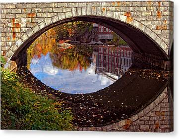 Through The Looking Glass Canvas Print by Joann Vitali