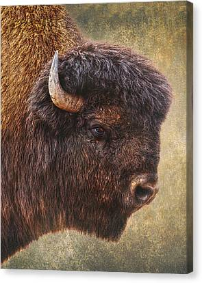 Thunder Beast Canvas Print by Ron McGinnis