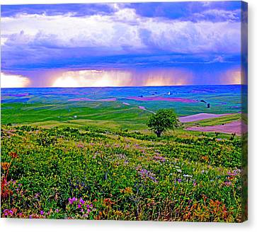 Thunderstorm Over The Palouse Canvas Print by Margaret Hood