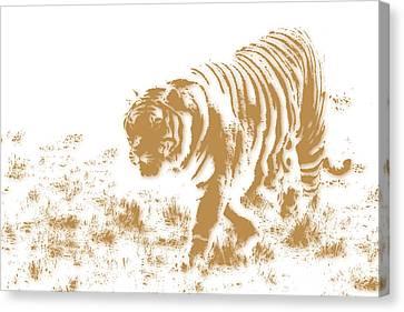 Tiger 2 Canvas Print by Joe Hamilton