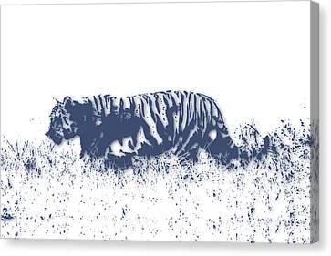 Tiger 4 Canvas Print by Joe Hamilton