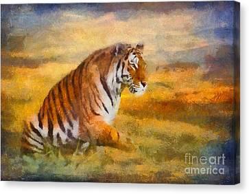 Tiger Dreams Canvas Print by Aimelle