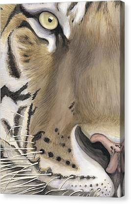 Tiger Face Canvas Print by Patty Vicknair