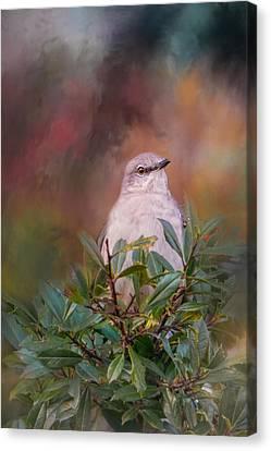 Tilda In The Holly Canvas Print by Jai Johnson