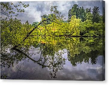 Time For Reflecting Canvas Print by Debra and Dave Vanderlaan