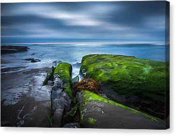 Time Passes Canvas Print by Peter Tellone