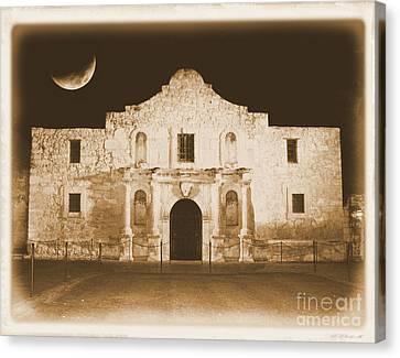 Timeless Alamo Canvas Print by Carol Groenen