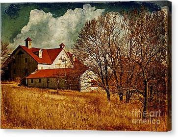 Tired Canvas Print by Lois Bryan