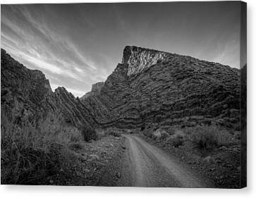 Titus Canyon Road Canvas Print by Peter Tellone