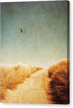 To The Beach Canvas Print by Wim Lanclus