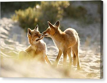 Togetherness - Mother And Kit Moment Canvas Print by Roeselien Raimond