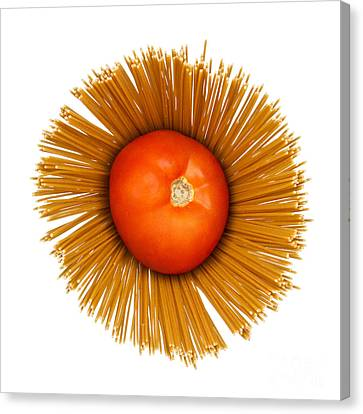 Tomato And Pasta Canvas Print by Blink Images