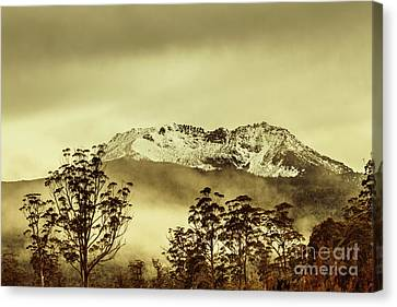Toned View Of A Snowy Mount Gell, Tasmania Canvas Print by Jorgo Photography - Wall Art Gallery