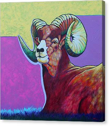 Top Heavy Big Horn Canvas Print by Joe  Triano