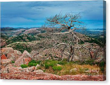 Top Of Mt. Scott Looking West Canvas Print by Tamyra Ayles