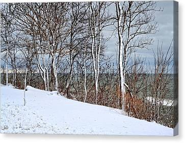 Top Of The Bluff Canvas Print by Michelle Calkins