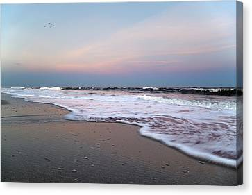 Topsail Dome-esticated Evening Canvas Print by Betsy C Knapp