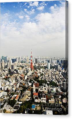 Tower And City View Canvas Print by Bill Brennan - Printscapes