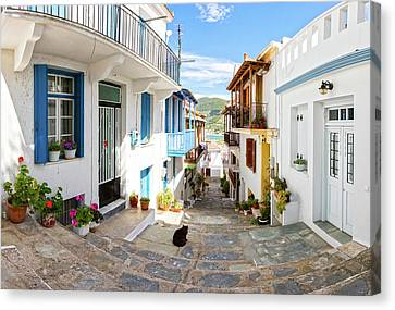 Town Of Skopelos Canvas Print by Evgeni Dinev