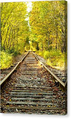 Track To Nowhere Canvas Print by Greg Fortier