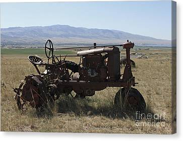 Tractor Canvas Print by Carolyn Brown